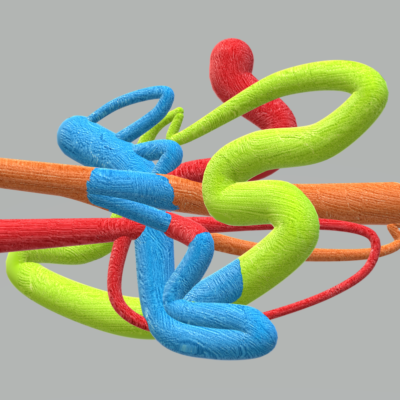 A computer-generated image of several bright-coloured tubular objects intertwined together against a neutral grey background.